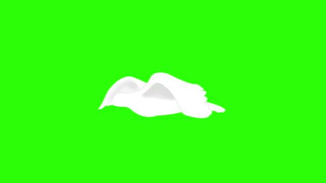 uccello bianco/colomba volando su verde schermo. - colomba video stock e b–roll