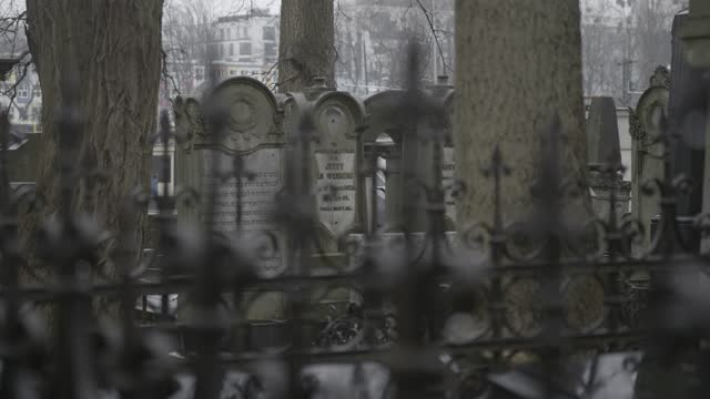 Focus change at the cemetery. 4K
