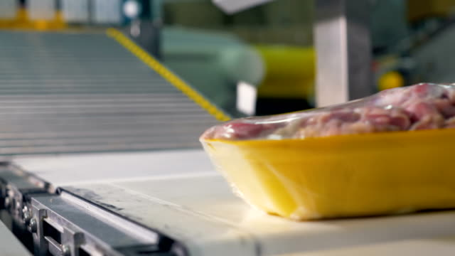 focused chicken meat trays move on a blurred conveyor line. - meat stock videos and b-roll footage