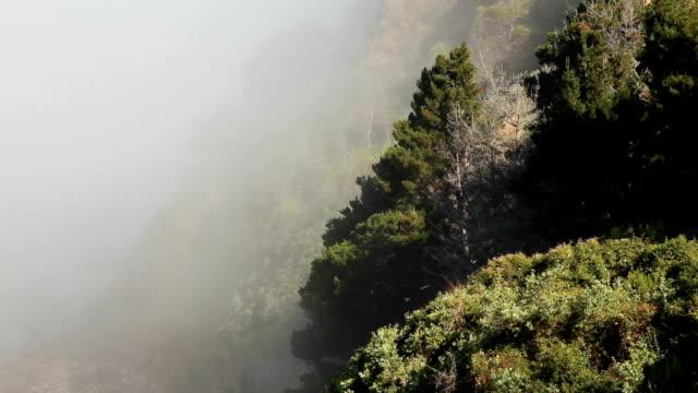 vídeos de stock e filmes b-roll de nevoeiro e montanha na costa da califórnia: big sur - estrada 001