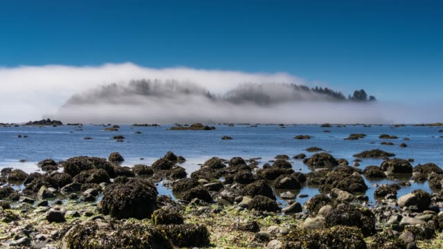 Fog Blowing Over Islands Off the Coast of Olympic National Park - Time Lapse video