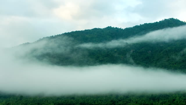 Fog Flowing on Tropical Mountains at Cold Temperature, Time-lapse video video