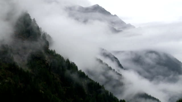 Fog Rising Up Above Mountain Forest TL video