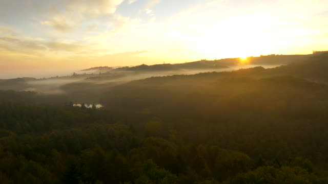AERIAL Foggy Countryside In The Sunrise video