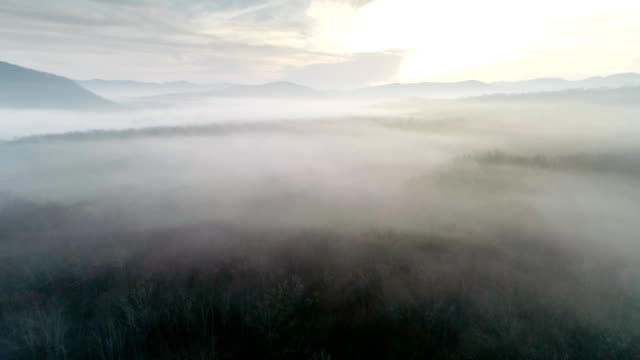 foggy forest with mountains, river, house flying over the foggy forest mountains and the river and home general view stock videos & royalty-free footage
