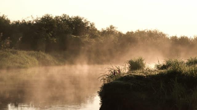 Foggy morning on a riverside