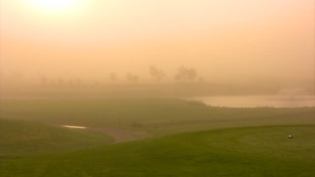Foggy Morning video