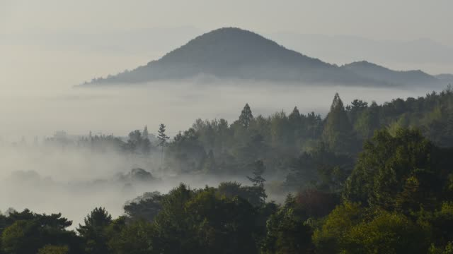 Foggy morning A fog rushing down the ridge in the morning. mountains in mist stock videos & royalty-free footage