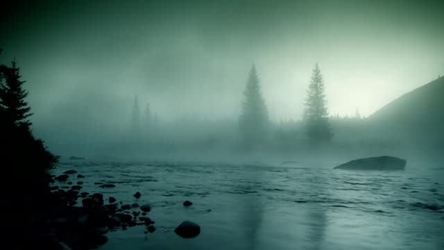 foggy river hd loop - trees in mist stock videos & royalty-free footage