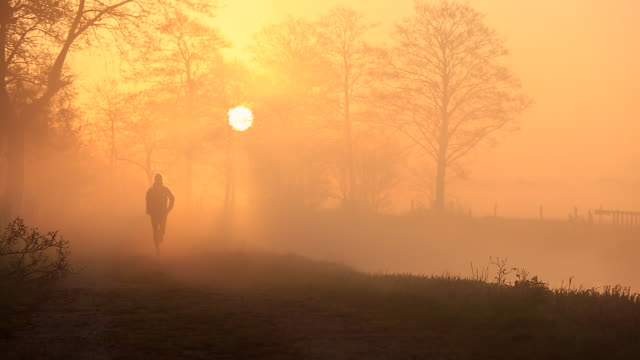 foggy run - early morning stock videos & royalty-free footage