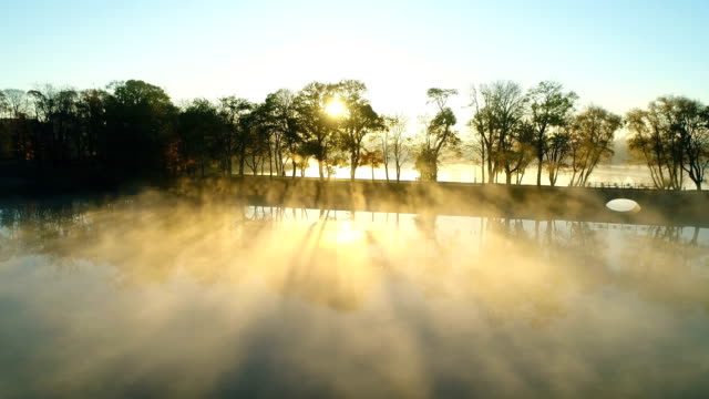 Foggy sunrise over park alley by the lake video