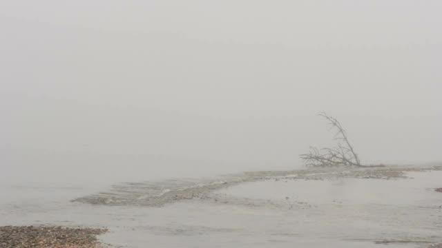 Fog's Solitude video