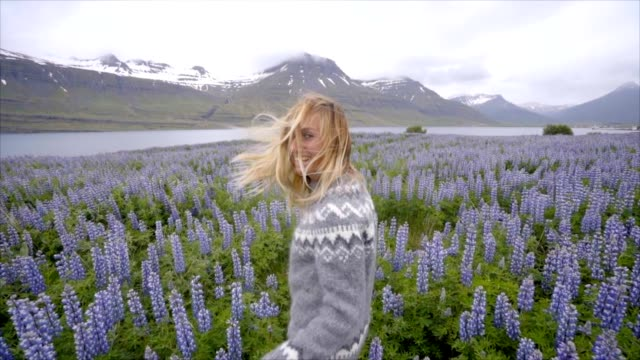 vídeos de stock e filmes b-roll de follow me to iceland, girlfriend waving hand at man to flower lupine field near lake and mountains people travel concept- 4k video - países nórdicos