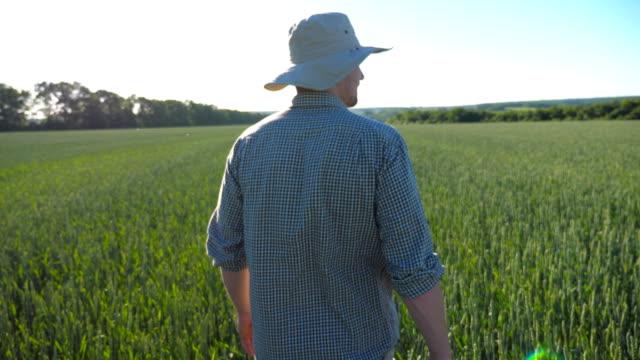 Follow to unrecognizable male farmer walking over green wheat field on his farm.