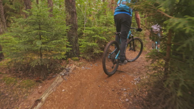 follow view of downhill riders with mountainbikes in a pine forest in änggårdsbergen in gothenburg - percorso per bicicletta video stock e b–roll