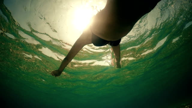 vídeos de stock e filmes b-roll de following a woman swimming in pool, underwater view with sunset sun rays and lens flare - mulher natureza flores e piscina