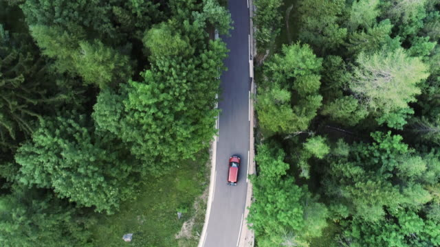 Following Car Driving On Road Thru Forest From Drone Point of View video