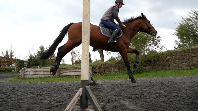 följande till häst galopperar och hoppa genom en barriär. professionella manliga jockey rider på hästryggen. hingsten körs på sanden på ridhuset. sidovy slow motion - hästhoppning bildbanksvideor och videomaterial från bakom kulisserna