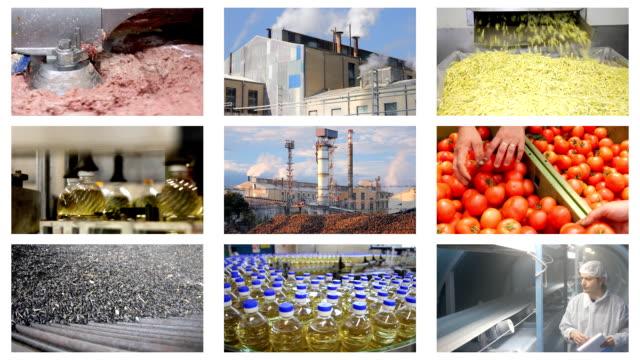 food industry multiscreen - gıda ve i̇çecek sanayi stok videoları ve detay görüntü çekimi