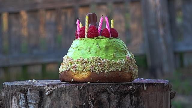bir çekiç dev ağır çekim tarafından ezilmiş gıda hazırlama - pasta stok videoları ve detay görüntü çekimi