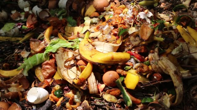 Food scraps compost heap. Recycles kitchen and yard waste. Home composting Kitchen scraps, fruit and vegetables: peels of potato, onion, lemon, tangerine, banana, kiwi, egg. Food waste for biodegraded by composting, and reused to fertilize soil food stock videos & royalty-free footage