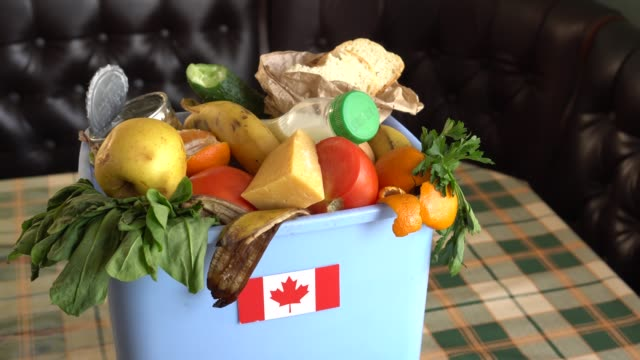 Food waste in Trash Can. The problem of food waste in Canada Food waste in Trash Can. The problem of food waste in Canada. Food loss is food that is discarded or lost uneaten leftovers stock videos & royalty-free footage