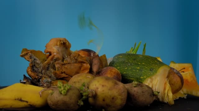 Food waste is decomposed into compost organic residues rotate on blue background video