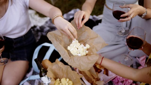 Footage from the top of three girls on a picnic outdoors. Drinking wine. One girl suggests a cubes cutted cheese. No faces Footage from the top of three girls on a picnic outdoors. Drinking wine. One girl suggests a cubes cutted cheese. No faces. cheese stock videos & royalty-free footage