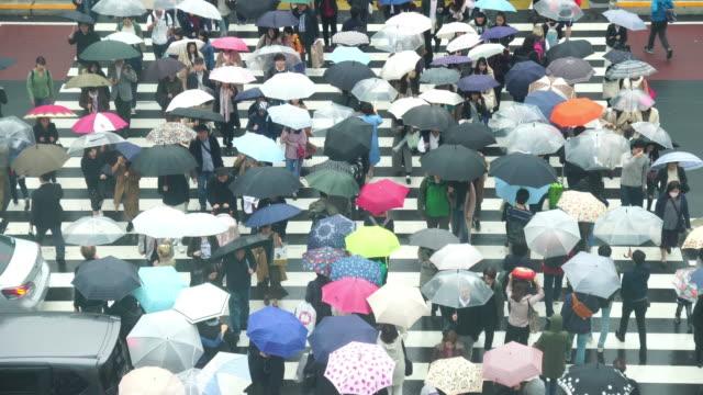 vídeos y material grabado en eventos de stock de 4 k imágenes de multitud de gente japonesa cruza la calle entre los edificios de la estación jr de shinjuku en el distrito financiero de shinjuku en tokio - señalización vial