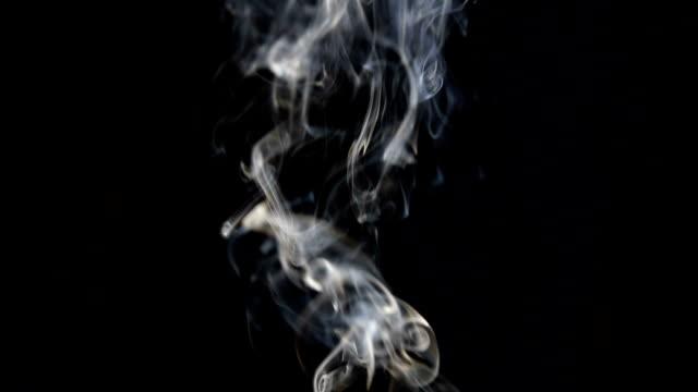 beyaz siyah arka plan üzerine duman hareketinin görüntülerini - tütün mamulleri stok videoları ve detay görüntü çekimi