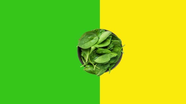 Footage of rotating spinning bowl with fresh spinach leaves on dutotone green yellow background. Creative animated food video