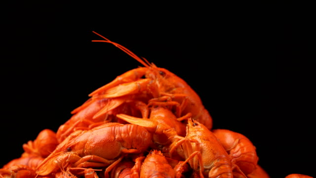 footage red boiled crawfish closeup rotate on a tray - granchio video stock e b–roll