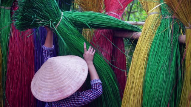 Footage scene of Back side of Vietnamese female craftsman drying traditional vietnam mats in the old village at Dinh Yen, Dong Thap, Vietnam, Tradition artist concept