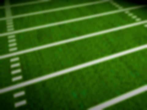 Football Field NTSC video