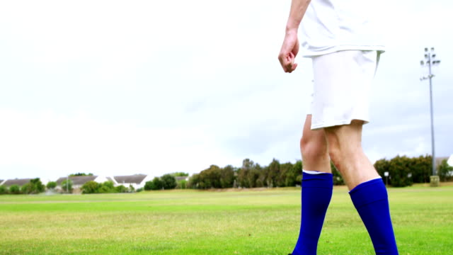 football player striking a ball in the field - campionato video stock e b–roll