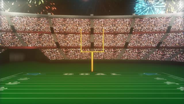 Football Stadium Going Crazy video