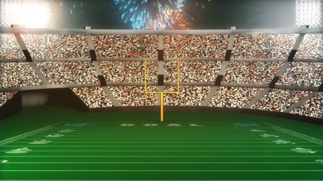 Football Stadium Going Crazy (Loopable) video