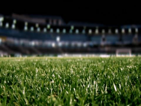 Football stadium video