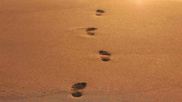 Footprints in the sand video