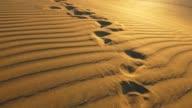 istock Footprints on sand of dune in desert during evening. Steadicam shot, 4K 1223790667