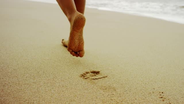近くには、柔らかな砂浜 - 動物の身体各部点の映像素材/bロール