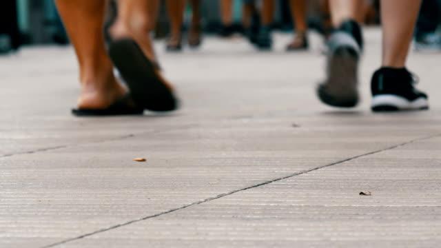 vídeos y material grabado en eventos de stock de pasos de una multitud de personas van en negocios en la metrópoli. peatones las personas caminar gran cruz de la ciudad - señalización vial