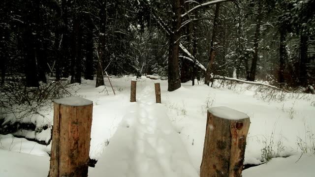 Footsteps On Snowy Bridge. video