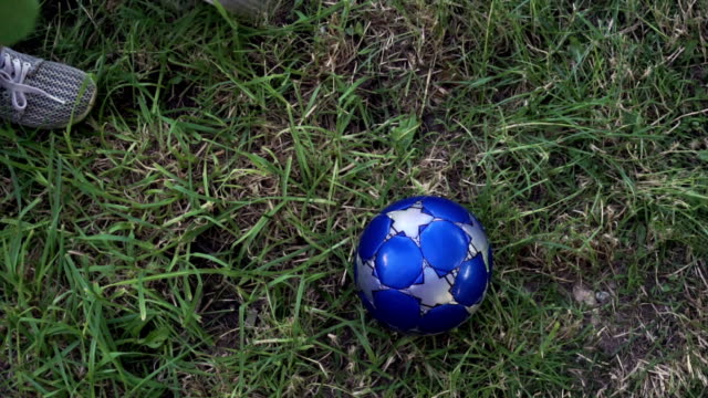 For the Love of the Game: Soccer/Futbol video