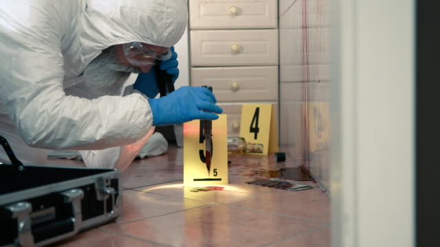 Forensic scientist working at crime scene Senior forensic scientist doing blood test at crime scene crime scene stock videos & royalty-free footage
