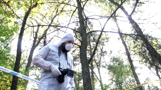 Forensics at the crime scene One man, crime scene investigation,forensics doing their job, taking photographs in the forest. crime scene stock videos & royalty-free footage