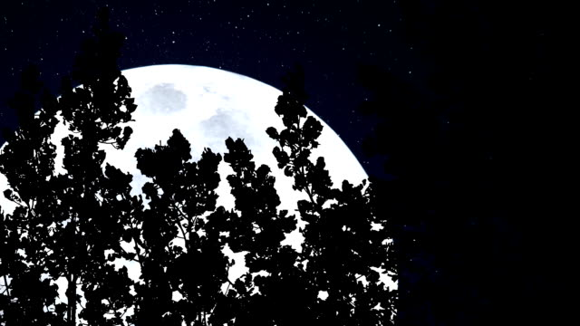 Forest and a Huge Blue Moon video