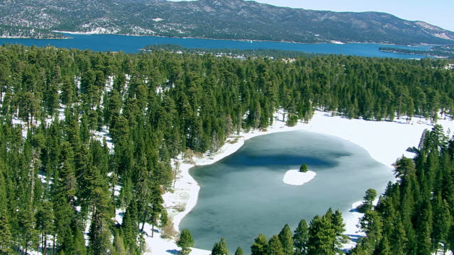 Forest and frozen pond near Big Bear, California video