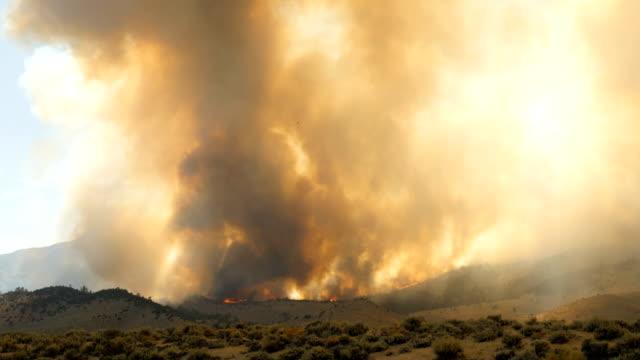 forest fire burning bergssidan - skog brand bildbanksvideor och videomaterial från bakom kulisserna