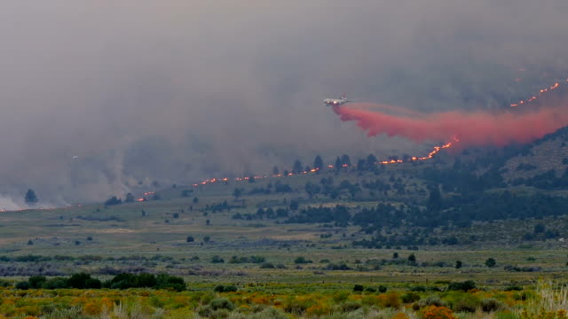 Forest Fire Water Drop Forest fire burning a mountainside in California. A plane drops fire retardant. california stock videos & royalty-free footage